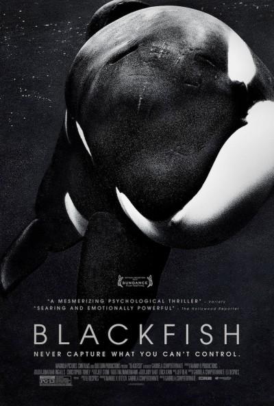 blackfish - poster