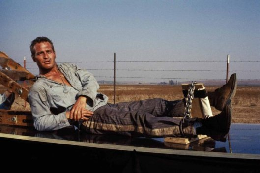 paul newman - cool hand luke